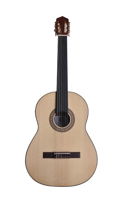 CG200 - Handmade Fretless Guitar