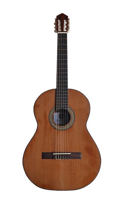 CG100 - Professional Handmade Guitar
